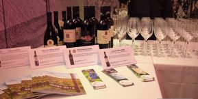 Italian wines from Apulia