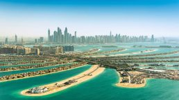 Dubai Palm Overview