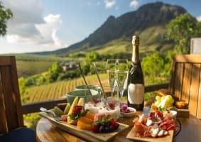 Gourmet Food & Wine Reviews