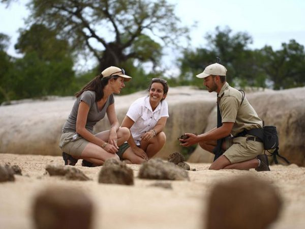 AndBeyond Ngala Safari Lodge Tracking Adventure