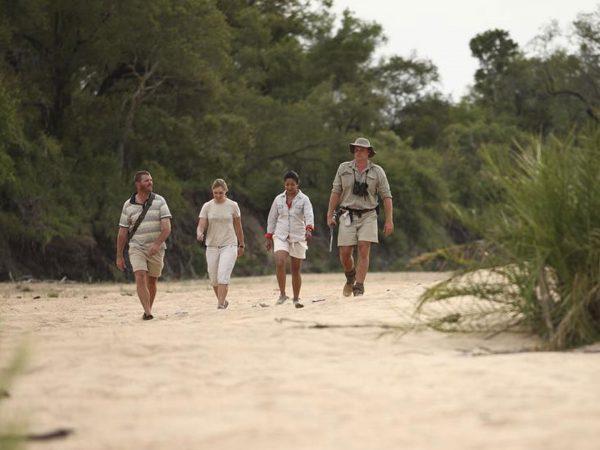 AndBeyond Ngala Safari Lodge luxury walking safari