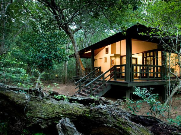 Andbeyond-Phinda-Forest-Lodge-Glass-Suite-Exterior