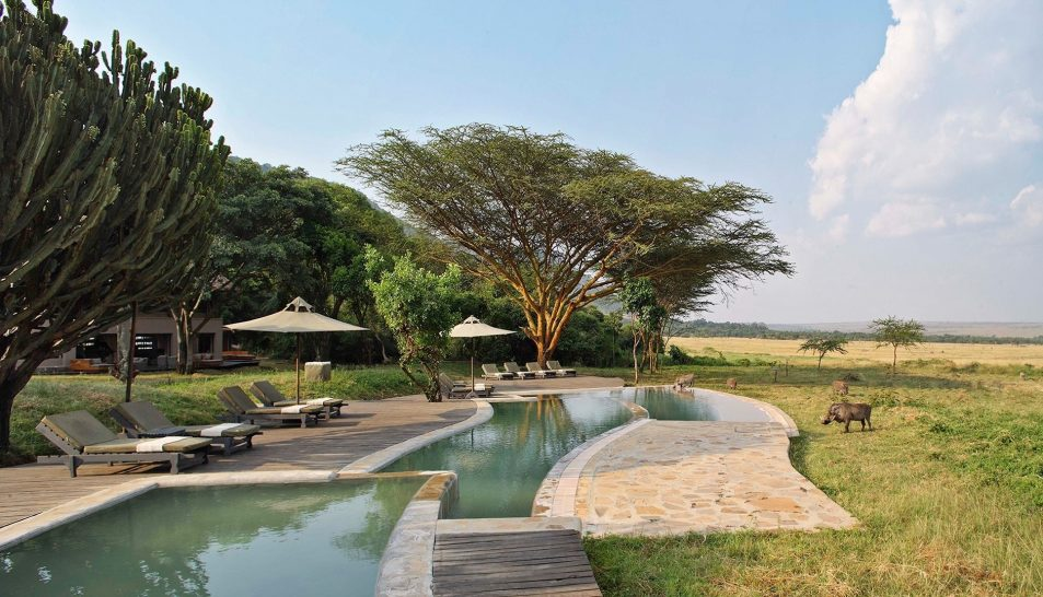 Kichwa tembo lodge pool boars