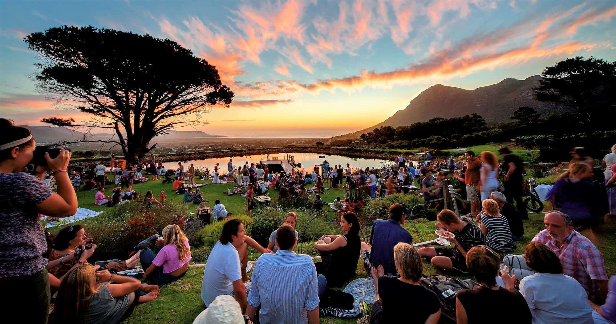 Sunset picnic at Cape Point Vineyards, Cape Town