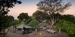 AndBeyond Expedition - Botswana Highlights Safari