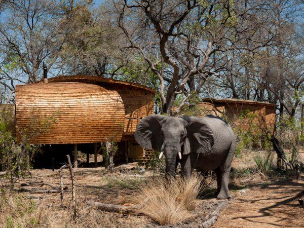 AndBeyond Sandibe Okavango Safari Lodge Ride