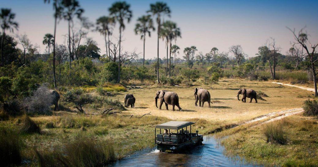 AndBeyond Expedition - Scenic Highlights Safari