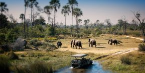 AndBeyond Expedition - Scenic Highlights Safari