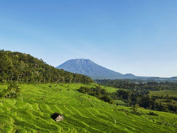 Amankila Rice Fields Mount Agung