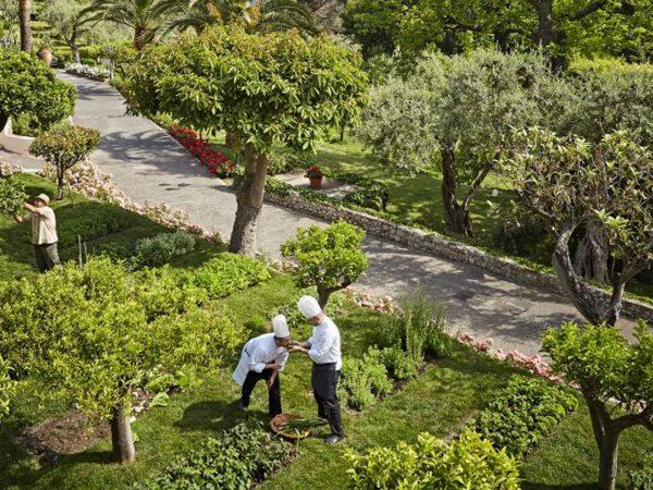 Garden View New