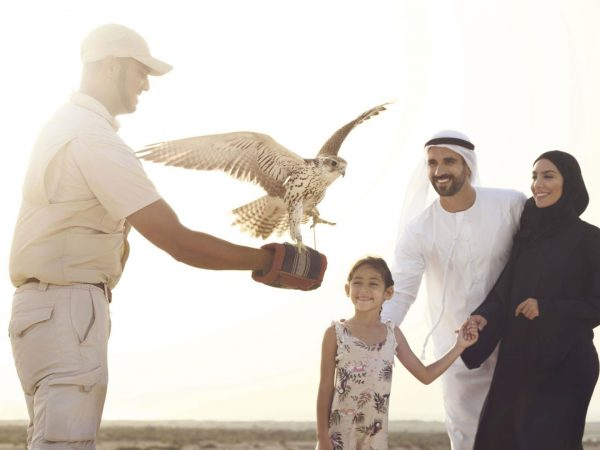 DIRS Falcon Show Family