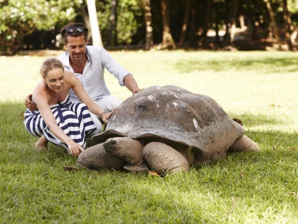 Couple With Turtle