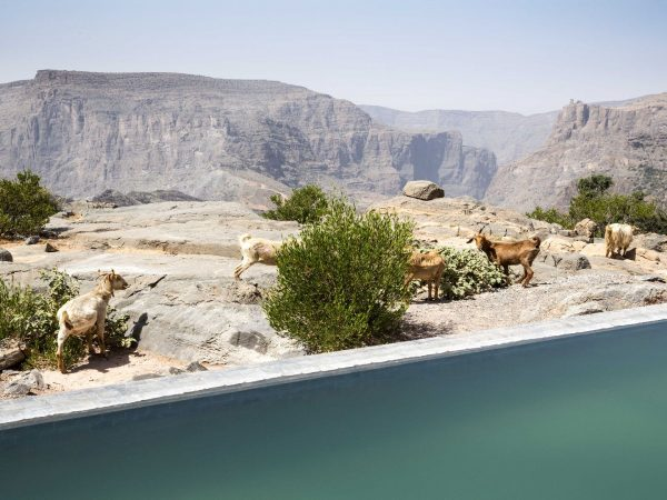 Anantara Al Jabal Al Akhdar Resort Cliff Pool Villa View