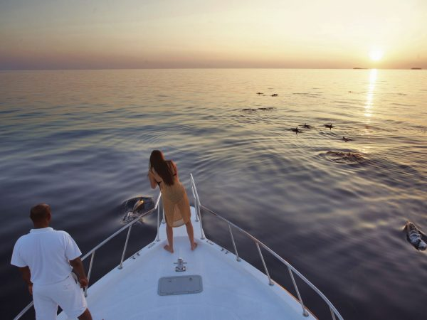 Dolphin Cruise Soneva Fushi, Maldives by Dan Kullberg