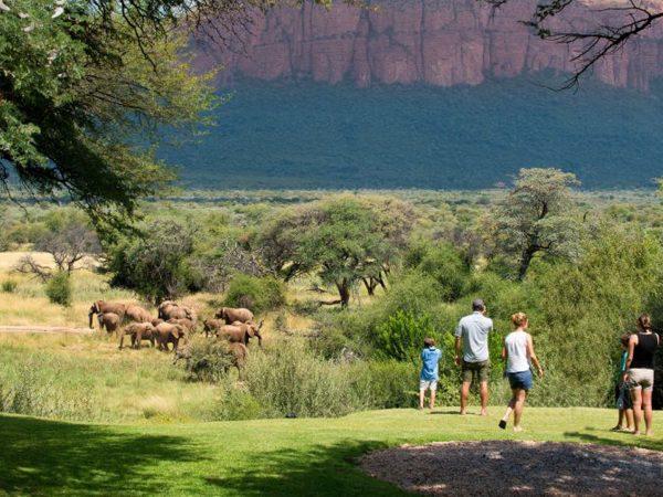 Marataba Safari Lodge Walking Trails Experience