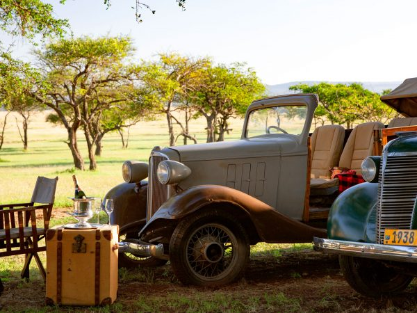 Sabora-Tented-Vintage-cars-in-the-camp