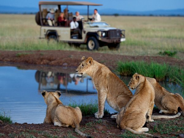 Singita Serengeti House Game Drive