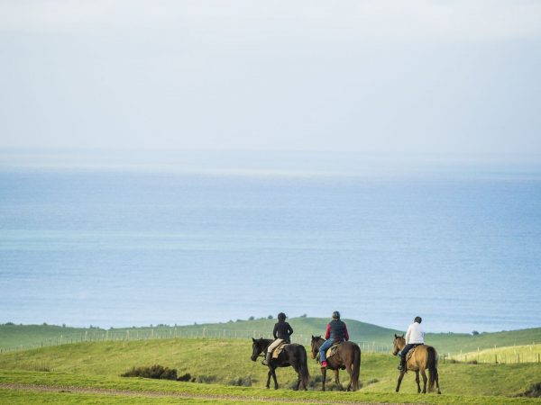 cape kidnappers horse riding