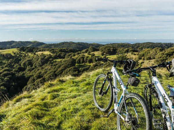 cape kidnappers mountain biking