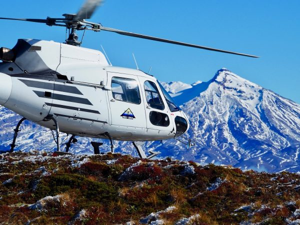 cape kidnappers heli tour