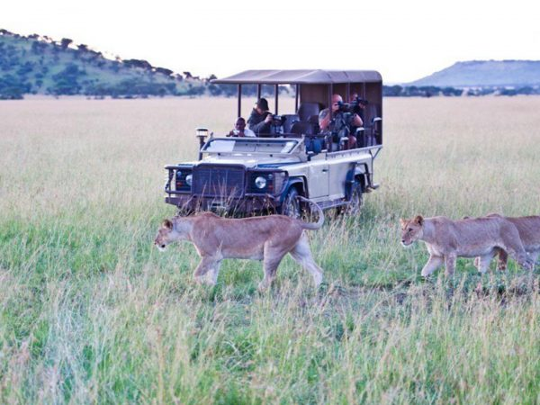 Singita-Faru-Faru-game-drives