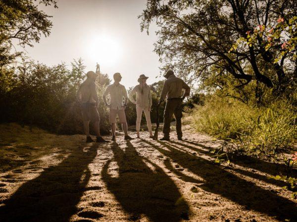 Singita Ebony Lodge Walking Safari