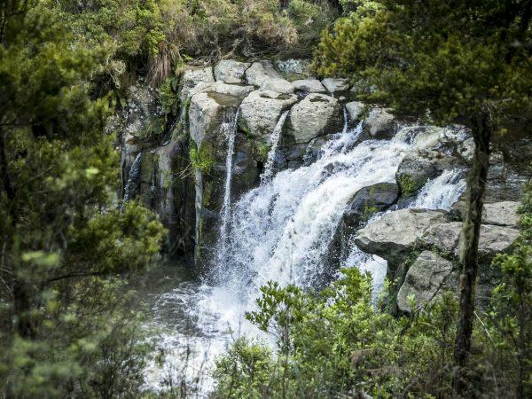 kauri cliffs water falls