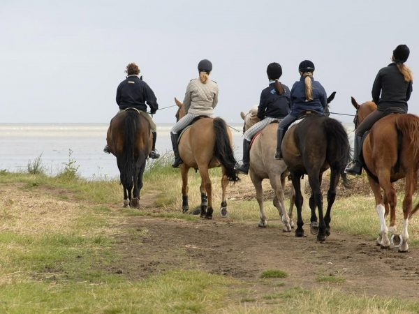 AndBeyond-Phinda-Rock-Lodge-Adventures-Horse-Riding