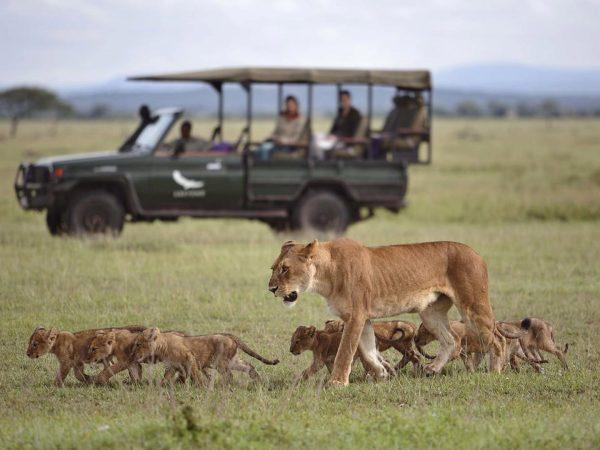 AndBeyond Grumeti Serengeti Tented Camp ride