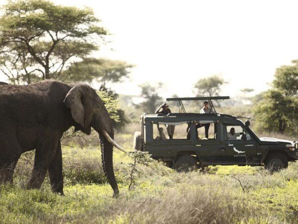 AndBeyond Grumeti Serengeti Tented Camp Game drive