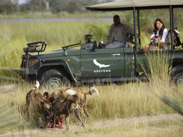 AndBeyond Nxabega Okavango Tented Camp Game Drive