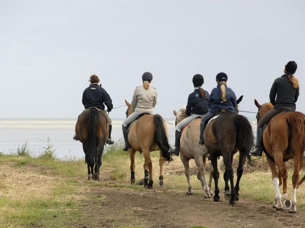 AndBeyond Phinda Forest Lodge horse riding