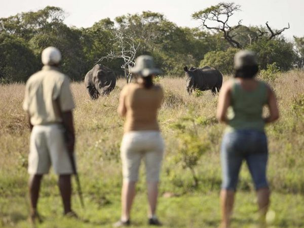 AndBeyond-Phinda-Rock-Lodge-Blacl-Rhino-Tracking-on-Foot