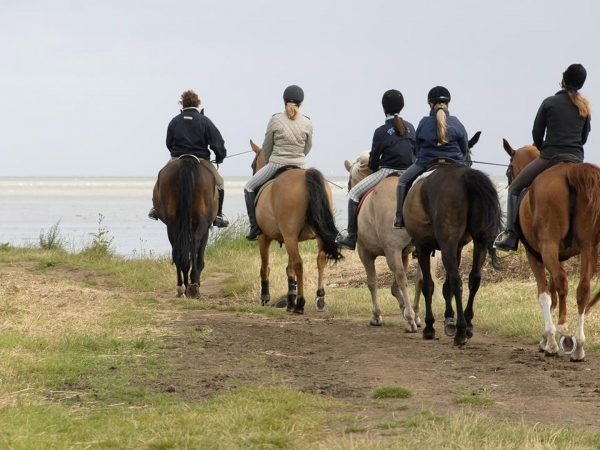 AndBeyond-Phinda-Vlei-Lodge-Guest-Suite-Adventures-Horse-Riding