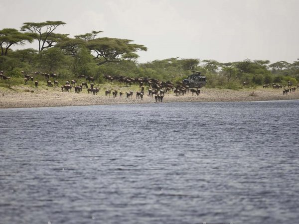 AndBeyond Serengeti Under Canvas activities