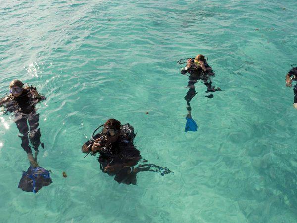 AndBeyond Vamizi Island diving