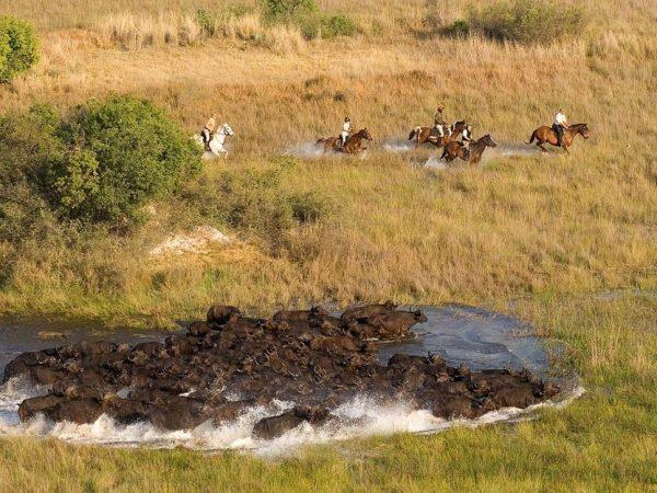 AndBeyond Xudum Okavango Delta Lodge Okavango Horseback Safari