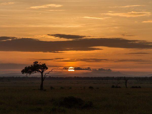 Angama Mara sunset view