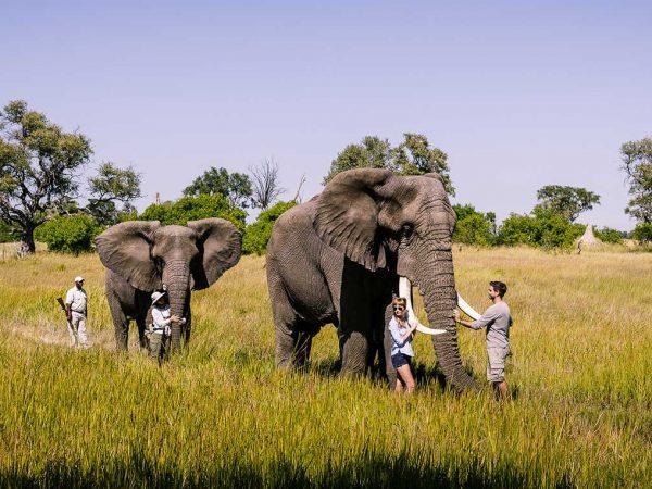 Sanctuary Baines Camp safari
