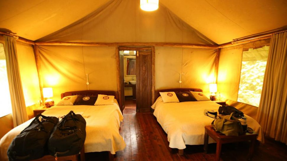 Sanctuary Gorilla Forest Camp Guest Bedroom