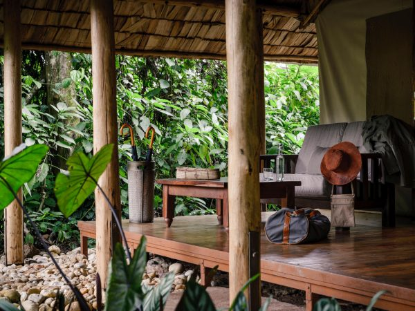 Sanctuary Gorilla Forest Camp Luxury Tent Decking