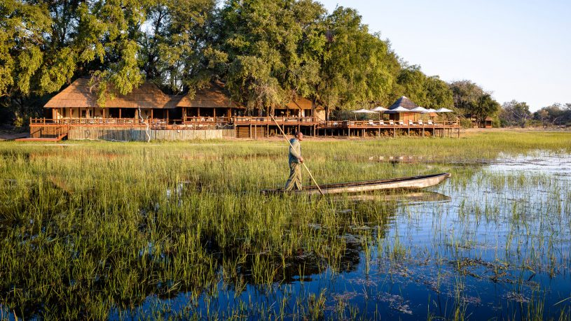 Sanctuary moremi game reserve lodge chiefs camp