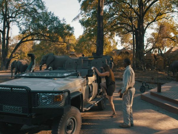 sanctuary Chief's Camp game Drive