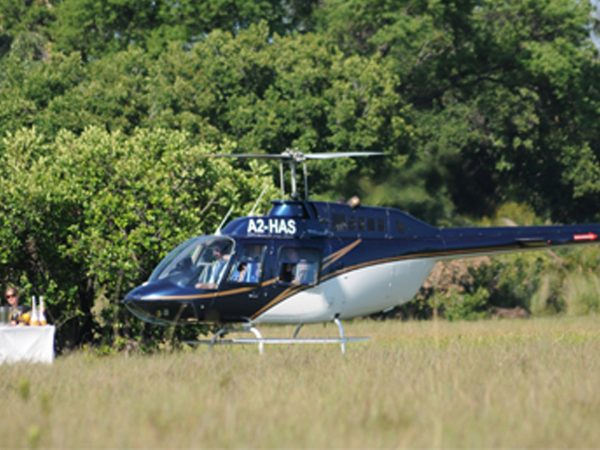 sanctuary Chief's Camp helicopter flights