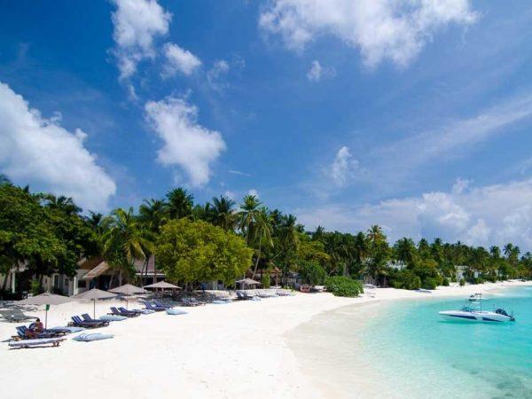 Amilla Fushi Maldives Beach