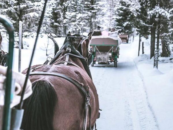 Carlton Hotel St. Moritz Coach ride