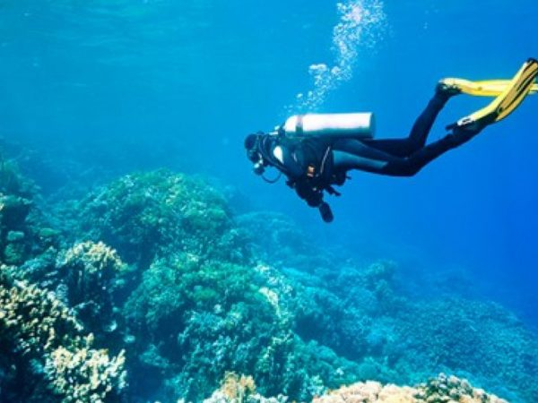 Hotel Eden Roc Scuba diving