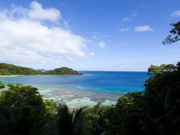 Laucala Island Beach Seagrass Bay