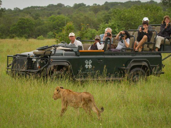 Londolozi Pioneer Camp Pioneer Photoragphic Safari