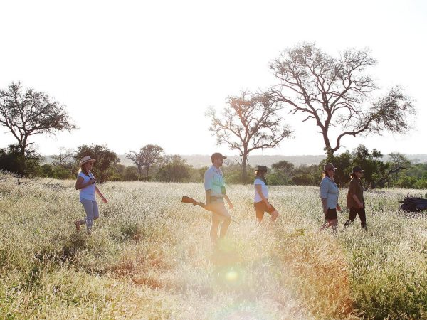 Londolozi Tree Camp Bush Walks